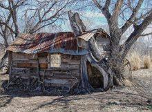 แบบบ้านหลังเล็ก ๆ บ้านฮอบบิท